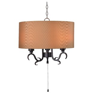 Darby Home Co Haston 3-Light Outdoor Pendant