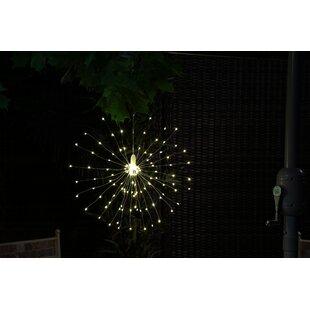 Capricornus Hanging Firework Novelty String Lights Image