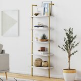 Moskowitz Ladder Bookcase by Orren Ellis
