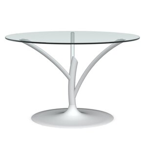 Acacia Small Fixed Dining Table by Calligaris