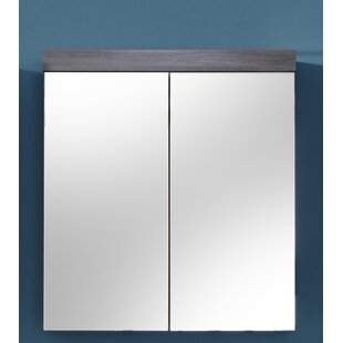 Martinson 72 X 79cm Wall Mounted Cabinet By Mercury Row
