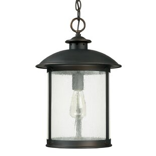 Reviews Calvin 1-Light Old Bronze Outdoor Hanging Lantern By Gracie Oaks