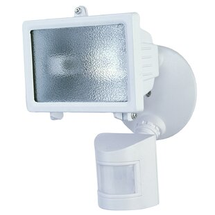 Heathco 1-Light Outdoor Floodlight