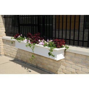 Mayne Inc. Yorkshire Self-Watering Plastic Window Box Planter