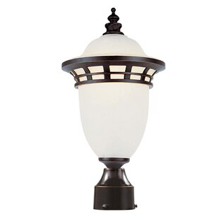 Towry Lantern Head by Fleur De Lis Living Comparison