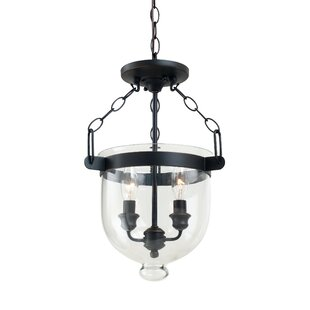 Cuffee 2-Light Urn Pendant by Darby Home Co