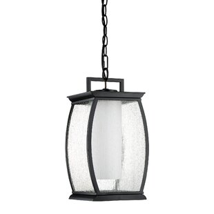 Buy clear Buntin 1-Light Outdoor Hanging Lantern By Mercury Row