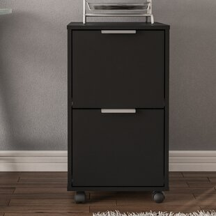 Ebern Designs Castelli 2 Drawer Vertical Filing Cabinet