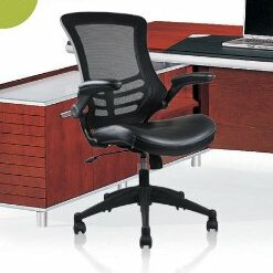Rugged Mesh Task Chair by Manhattan Comfort Wonderful