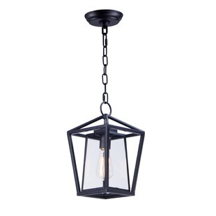 Kiernan 1-Light Outdoor Hanging Lantern