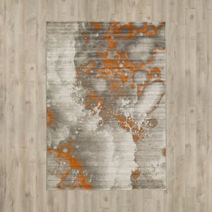 Chartwell Light Gray Burnt Orange Area Rug Allmodern