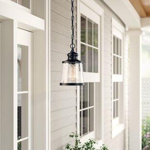 Jeffries 1-Light Outdoor Hanging Lantern