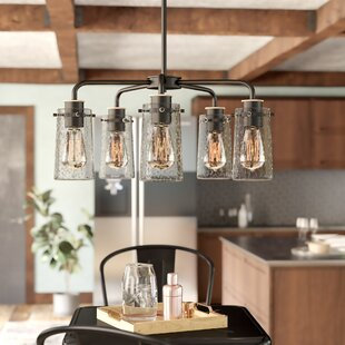 Best Price Fruita 5-Light Shaded Chandelier By Trent Austin Design
