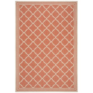 Adler Orange Indoor/Outdoor Area Rug