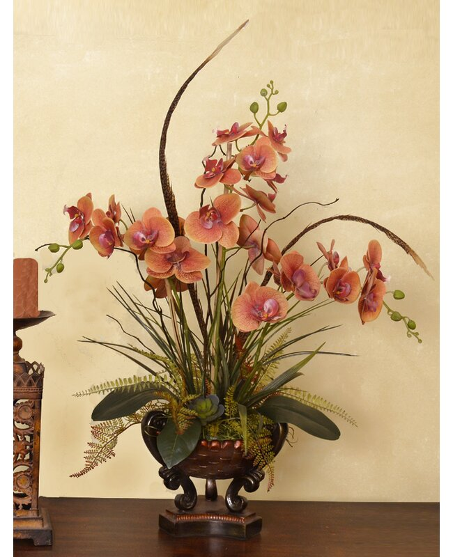 floral home decor orchid floral design wayfair.htm bloomsbury market phalaenopsis with feathers orchid floral  feathers orchid floral