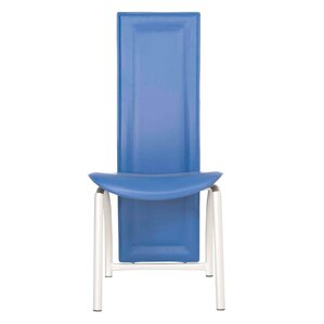 Ager Side Chair by Latitude Run
