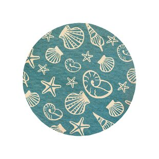 Monticello Cardita Shells Hand-Woven Turquoise Indoor/Outdoor Area Rug by Beachcrest Home