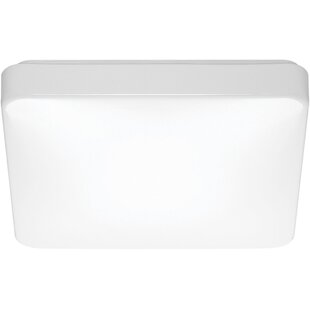 Best Reviews Dahlgren 1-Light LED Outdoor Flush Mount By Ebern Designs