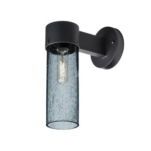 Best Price Cattalina 1-Light Outdoor Black Sconce By Latitude Run