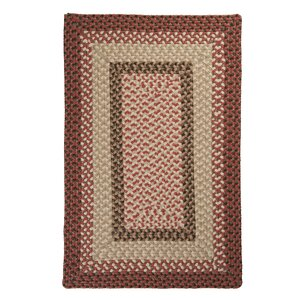 Tiburon Rusted Rose Braided Indoor/Outdoor Area Rug