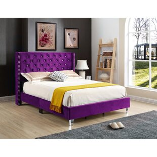 Affordable Connolly Upholstered Panel Bed by Mercer41 Reviews (2019) & Buyer's Guide
