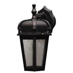 Flannigan Outdoor Wall Lantern by Charlton Home