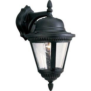 Alcott Hill Triplehorn 1-Light Traditional Aluminum Wall Lantern