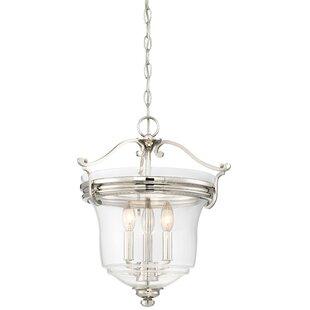 Darby Home Co Ameche 3-Light Urn Pendant