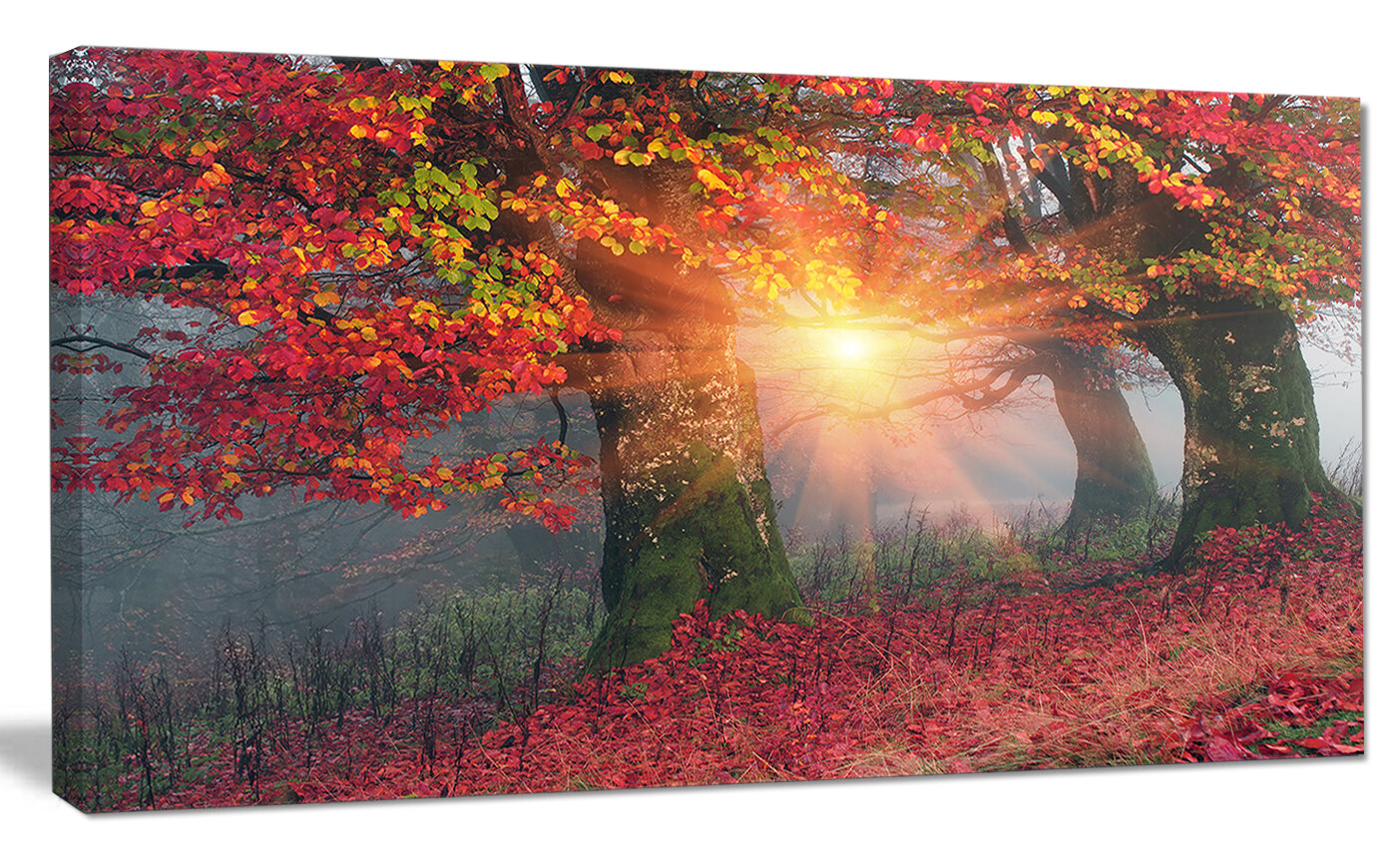 Designart Yellow Sun In Red Autumn Forest Graphic Art Print On Wrapped Canvas Wayfair