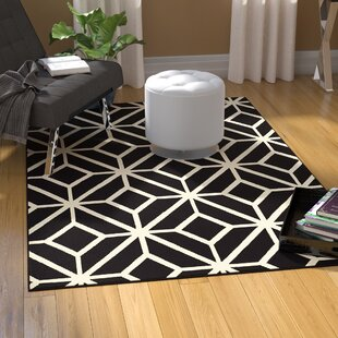 Best Reviews Pleione Polypropylene Black/White Area Rug By Wrought Studio