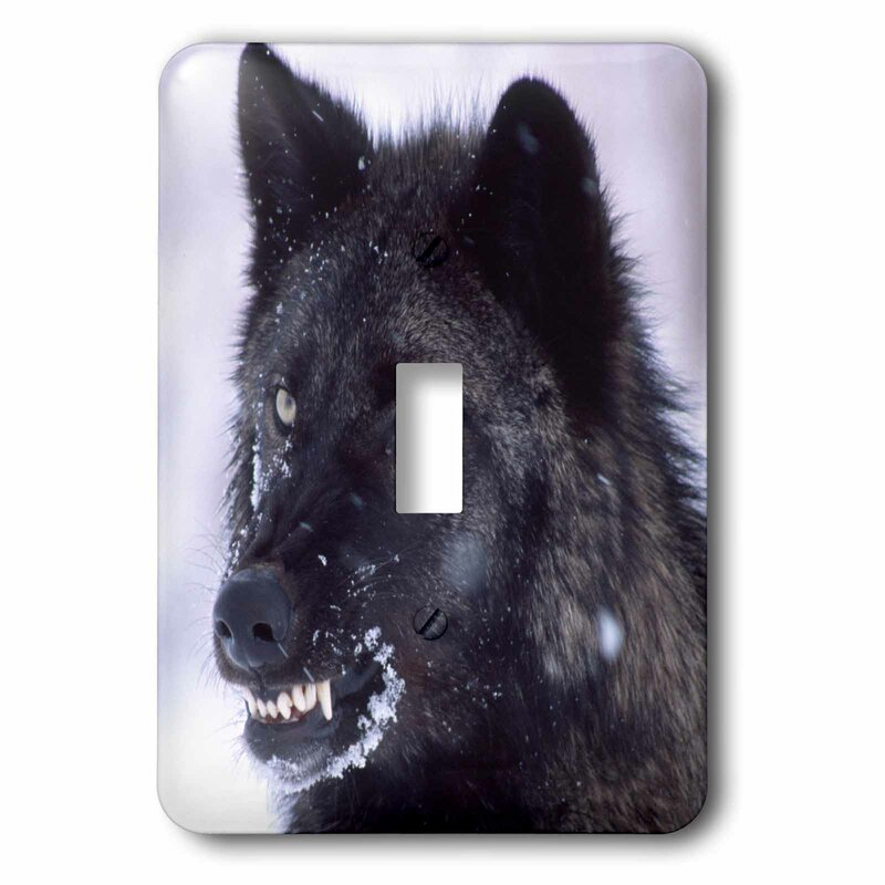 3drose Wolf Canis Lupus 1 Gang Toggle Light Switch Wall Plate Wayfair