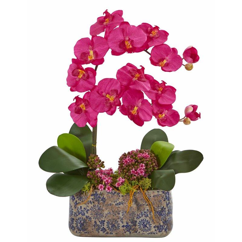floral home decor orchid floral design wayfair.htm world menagerie artificial phalaenopsis orchid floral arrangement  world menagerie artificial phalaenopsis