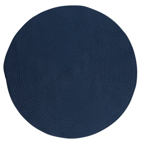 Winston Porter Mcintyre Braided Blue Indoor Outdoor Area Rug Reviews Wayfair