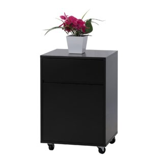 Neufeld 2 Drawer Mobile Vertical Filing Cabinet