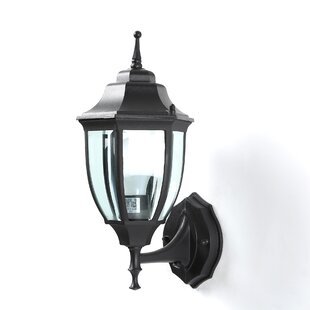 Broom 1-Light Outdoor Sconce