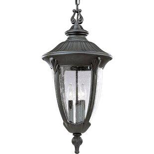 Alcott Hill Triplehorn 3-Light Formal anging Lantern