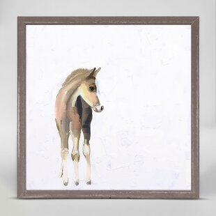 Baby Horse by Cathy Walters Mini Canvas Framed Art