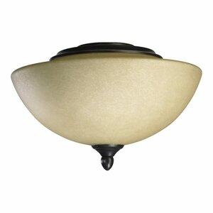 Salon 2-Light Bowl Ceiling Fan Light Kit