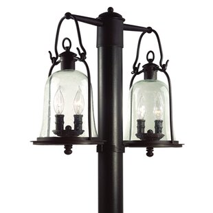 Theodore Cottage 4-Light Lantern Head by Darby Home Co