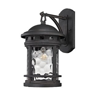 Williston Forge Binette 1-Light Outdoor Wall Lantern