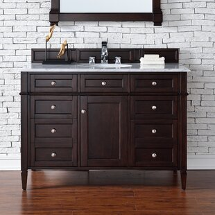 Deleon 48 Single Burnished Mahogany Bathroom Vanity Set by Darby Home Co