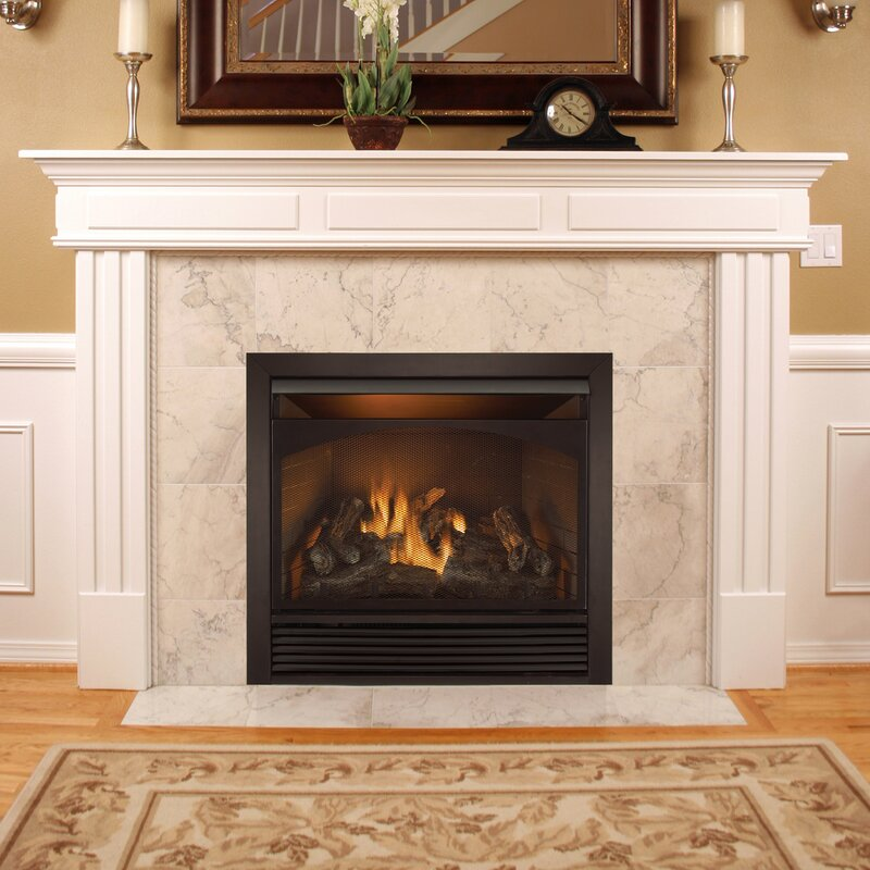 single fireplace in btu pd w burner free shop steel insert gas vent