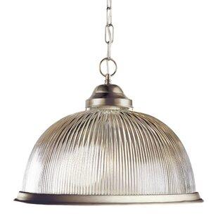 TransGlobe Lighting Back To Basics 1-Light Dome Pendant