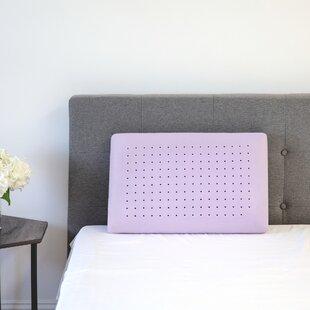 Hattie Lavender Infused Medium Memory Foam Standard Pillow
