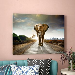 Elephant Wall Art You Ll Love In 2019 Wayfair