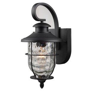 Liadan 1-Light Outdoor Wall Lantern by Longshore Tides