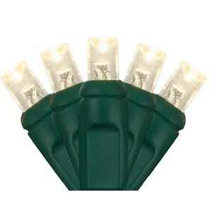 Wintergreen Lighting 20 Li..
