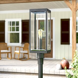 Viles 1-Light Lantern Head by Gracie Oaks Find