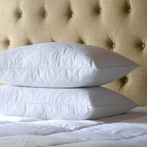 Posturepedic Feathers Pillow (Set of 2) by Sealy