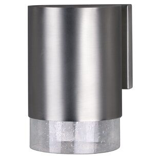 Abron 1-Light Outdoor Wall Lantern